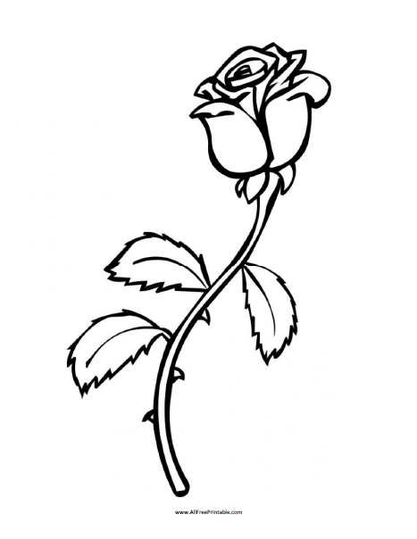 Free Printable Rose Coloring Page