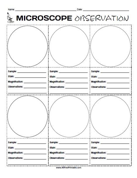 Free Printable Microscope Observation Worksheet