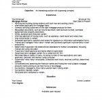 Mortgage Adviser Resume Template